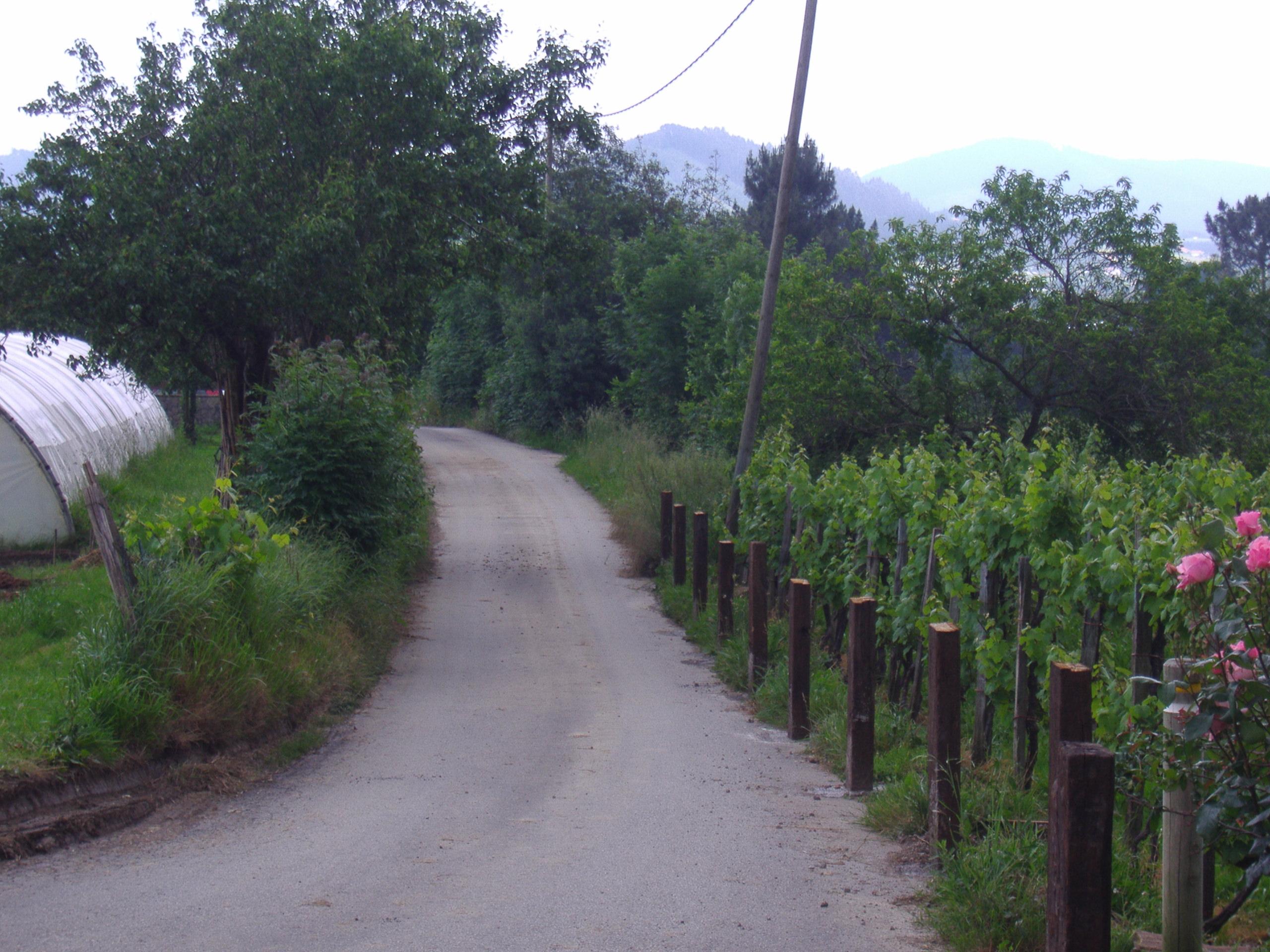 Imagen de las estacas ya colocadas y la izquierda, el cierre del vecino que se ha permitido.