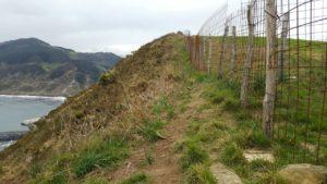 Vallado de la finca del casoplón, al borde del acantilado, que incumple la servidumbre de protección.